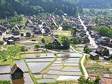 The largest village in the mountainous Shirakawa-go region of Gifu Prefecture, Ogimachi preserves many massive gassho-zukuri farm houses in its village center and an adjacent open-air museum. The best way to experience the village is to overnight at one of the farm houses.