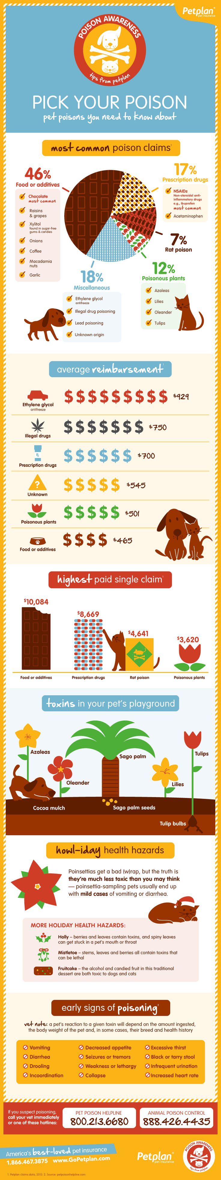Pet Poison Awareness #Infographic. Share to keep pets safe!