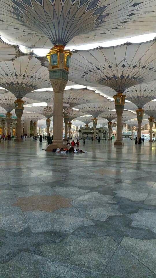 أحد ساحات المسجد النبوى..
