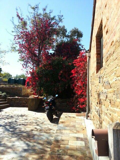 Autumn in Maldon Victoria