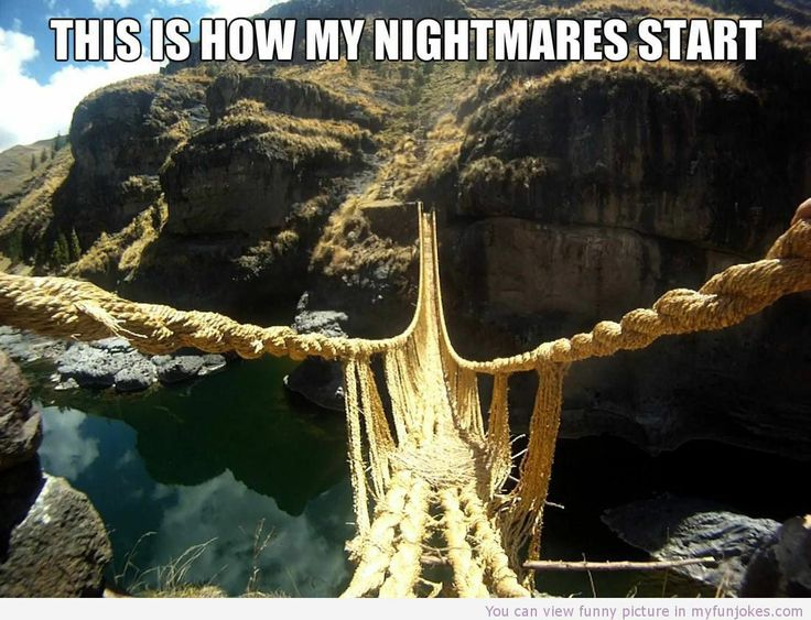 This is how my nightmares start funny photo - http://www.myfunjokes.com/other-funny/this-is-how-my-nightmares-start-funny-photo/ #humor  #joke  #funnypics  #funnyanimal  #dog  #haha  #cute