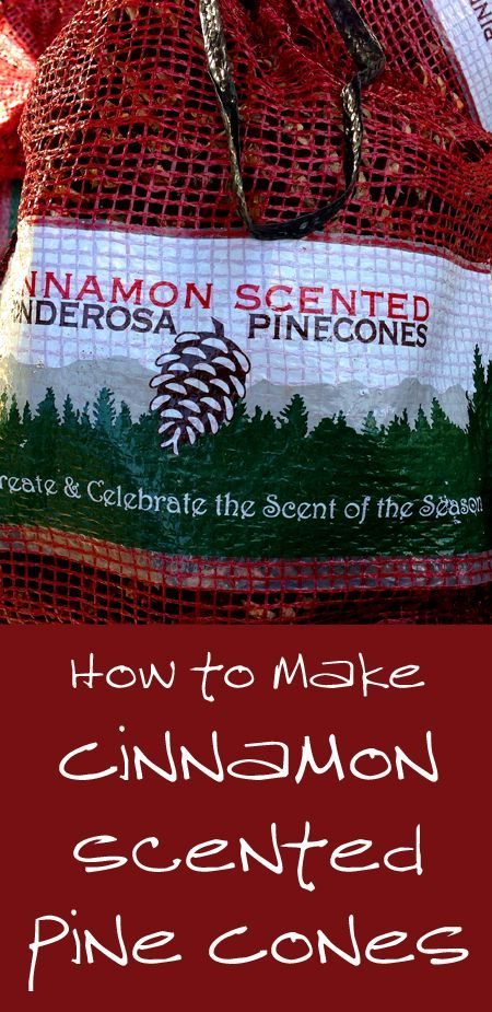 Cinnamon scented pine cones are a great addition to your Christmas decor and they make great Christmas gifts. You can purchase them in a store for about $10 for 12-20 pine cones or you can make your own for much less money, especially...