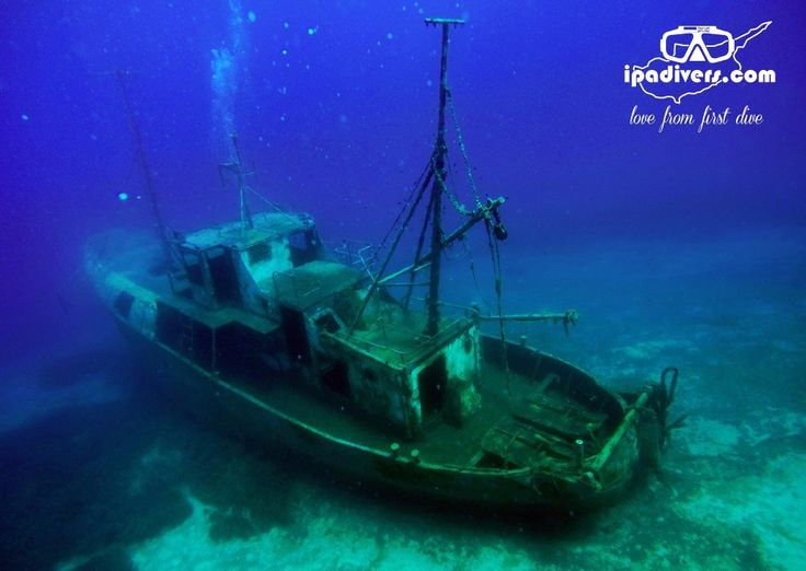 IPAdivers Diving Center, Protaras: See 18 reviews, articles, and 63 photos of IPAdivers Diving Center, ranked No.15 on TripAdvisor among 26 attractions in Protaras.