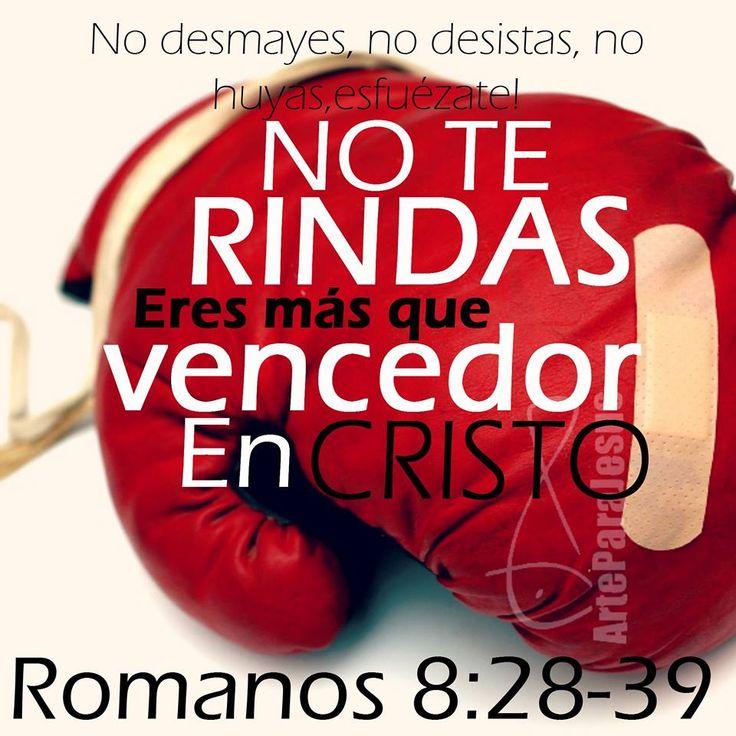 Romanos 8:37-39 Antes, en todas estas cosas somos más que vencedores por medio de aquel que nos amó.  Por lo cual estoy seguro de que ni la muerte, ni la vida, ni ángeles, ni principados, ni potestades, ni lo presente, ni lo por venir,  ni lo alto, ni lo profundo, ni ninguna otra cosa creada nos podrá separar del amor de Dios, que es en Cristo Jesús Señor nuestro. ♔