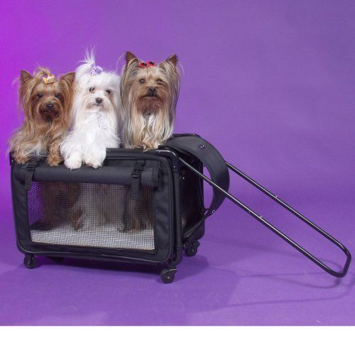 1000 Images About Strollers And Bike Trailers For Dogs