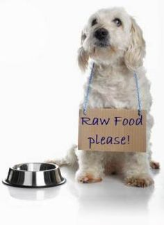 Raw Dog Food Recipes - Dog by bowl