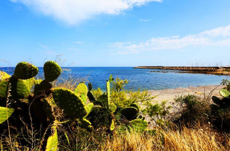 A Villaputzu in provincia di Cagliari, trovi il Camping Porto Corallo: ha la piscina, la spiaggia attrezzata e l'animazione: aquagym, giochi sulla spiaggia, fitness, tornei di tennis, calcetto e beach-volley. Oltre alle piazzole per tenda e roulotte trovi anche bungalow fino a 4 persone. Da qui puoi affittare uno scooter e visitare le splendide spiagge della Sardegna sud-orientale: da Muravera a Costa Rei, fino giù a Villasimius.