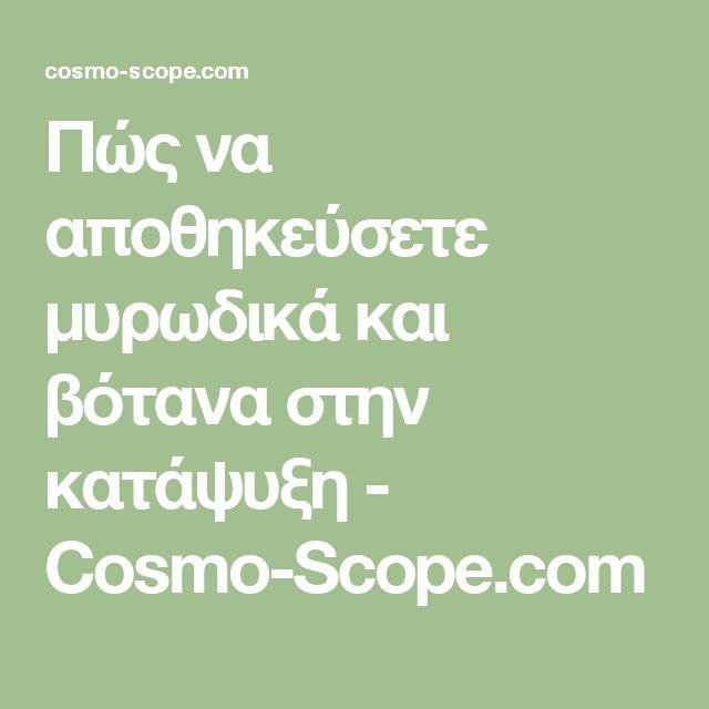 Πώς να αποθηκεύσετε μυρωδικά και βότανα στην κατάψυξη - Cosmo-Scope.com
