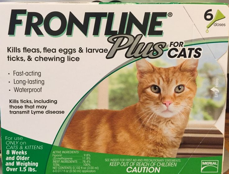 Flea and Tick Remedies 20738: Frontline Plus For Cats 8 Weeks Up 6 Months Supply Merial Green Box -> BUY IT NOW ONLY: $44.99 on eBay!