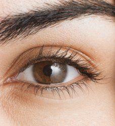 Le maquillage des yeux marrons