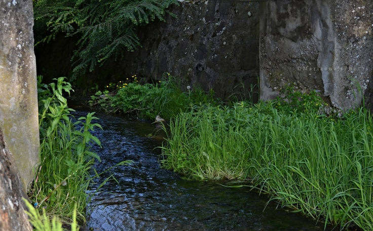 Creek (Diósjenő, Nógrád county, Hungary)