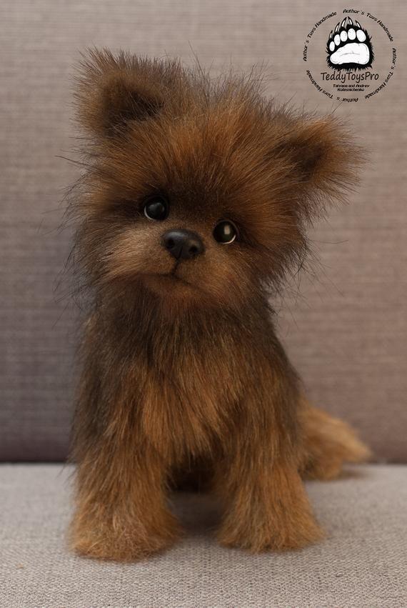 Puppy Ricky Yorkies Yorkshire Terrier York Toy Toy Little York