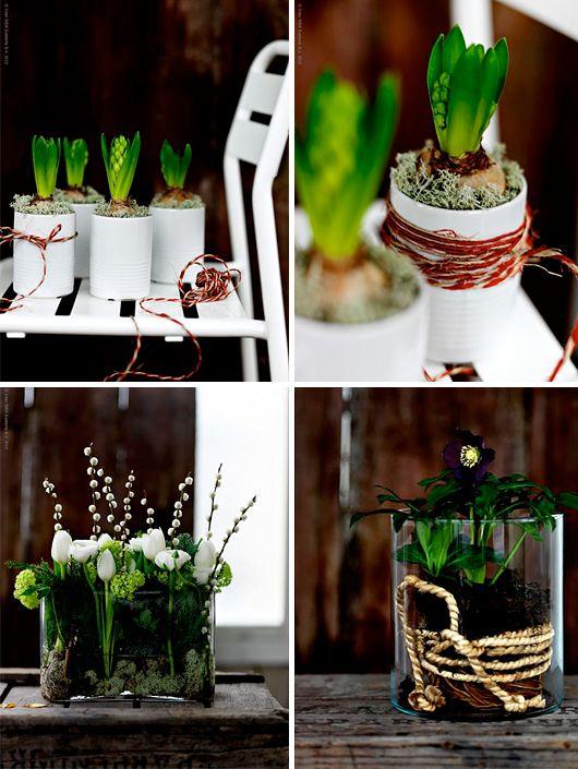 Blomsterarrangemang i Iittala-vasen, mossa, lav, korta blomskaft o vide.