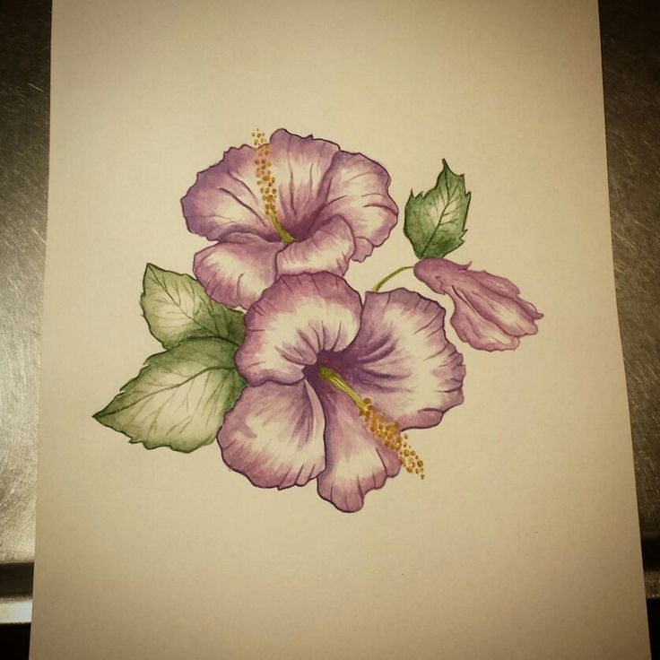 Flower watercolor watercolour by Madeleine Hoffman