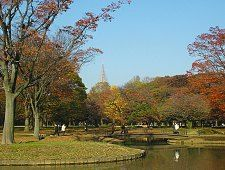 Yoyogi Park 5:00 to 20:00 (until 17:00 during the winter)  Facilities are typically open from 9:00 to 17:00. Yoyogi Koen (Yoyogi Park) is one of Tokyo's largest and most pleasant city parks, featuring wide lawns, ponds and forested areas. It is a great place for jogging, picnicking and other outdoor activities.