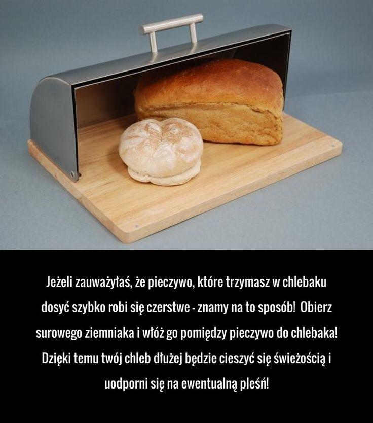 Jeżeli trzymasz chleb w chlebaku to musisz to wiedzieć!