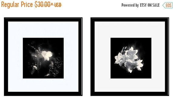 SALE 20% OFF Black and White Photos, Fine Art Photography, 2 Print Set, Bluebells