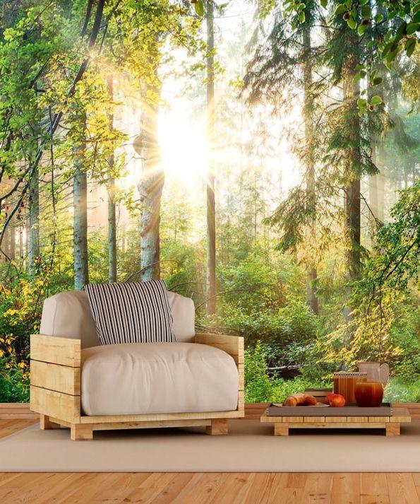 """Fototapete, Vlies Fototapete """"Untamed Nature"""".  Hauptmotive der Fototapete:  Landschaft, Natur, Bäume, Wald und Sonne. Moderne Deko-Idee für skandinavischen Stil."""