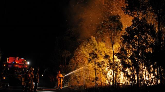 NSW RFS firefighters battle a bushfire burning close to homes on Patterson street at Springwood in the Blue Mountains west of Sydney. (AAP)