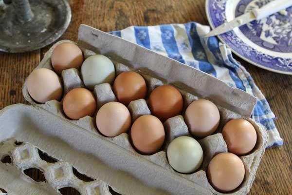 Yumurtanın Daha Uzun Süre Taze Kalması İçin Ne Yapmalısınız? Öğrenmek için Tıklayın! #pratikbilgiler #püfnoktaları #hayatkolay #püfnoktası #faydalıbilgiler