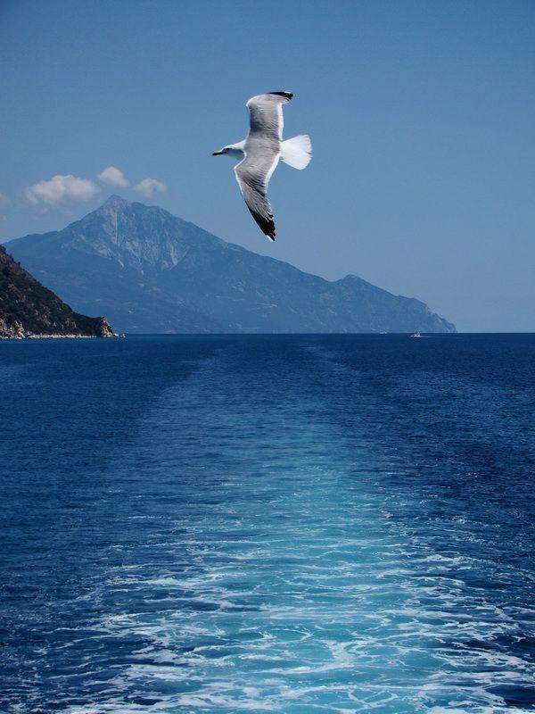 mount athos #chalkidiki