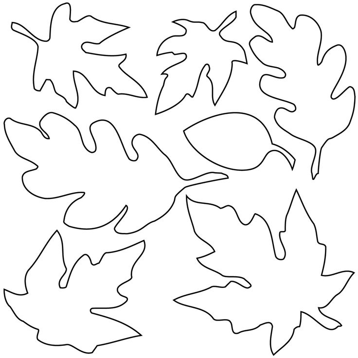 fall leaf template