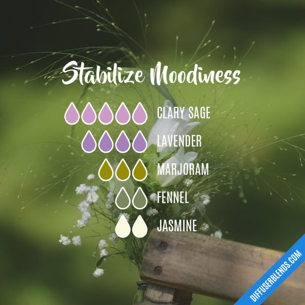 Stabilize Moodiness - Essential Oil Diffuser Blend