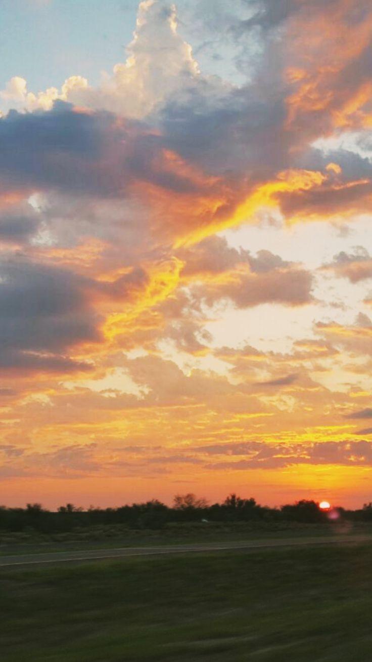 Naturaleza Viva #aire #libre #cielo
