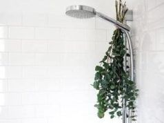 Metti queste erbe nella doccia ed eliminerai subito rinite e sinusite