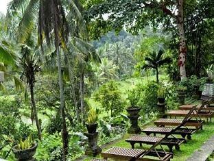Bucu View Bungalow Ubud, Bali