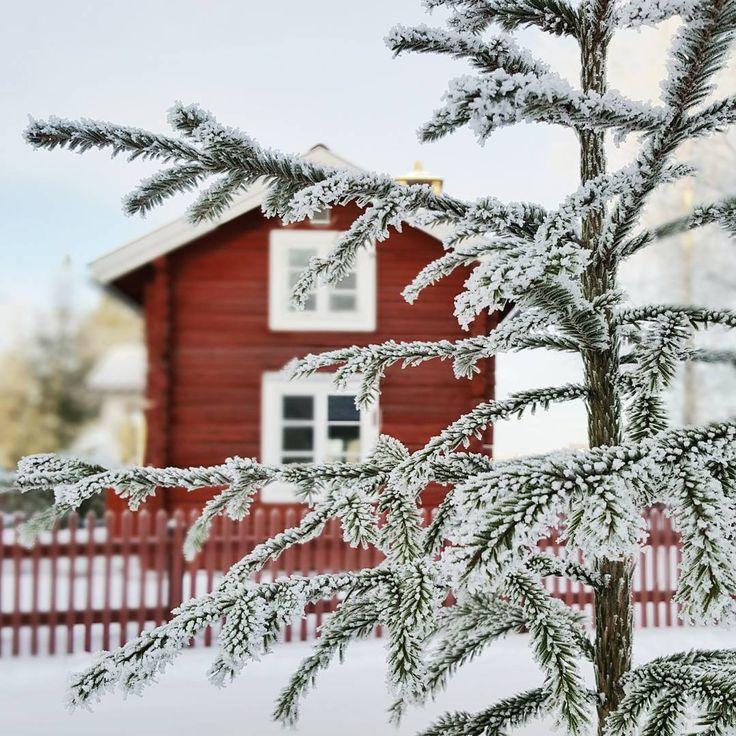 Red cabin and frozen tree. Dalarna, Sweden  (@by_addie) auf Instagram: