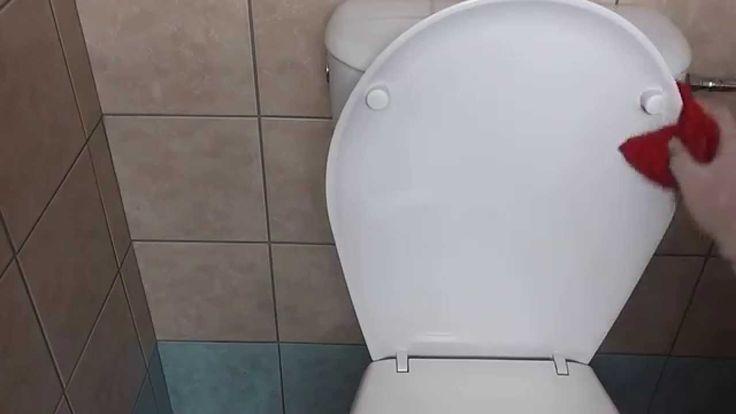 Jak perfektně vyčistit toaletu a všechna její zákoutí