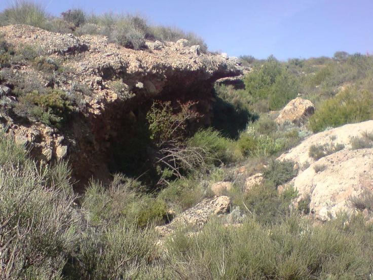 Detalle que la erosión hace en un barranquillo