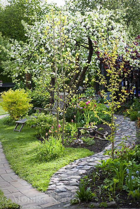 """Kullerstensgång från bloggen """"Trädgård på djupet"""", Monica Norrby."""