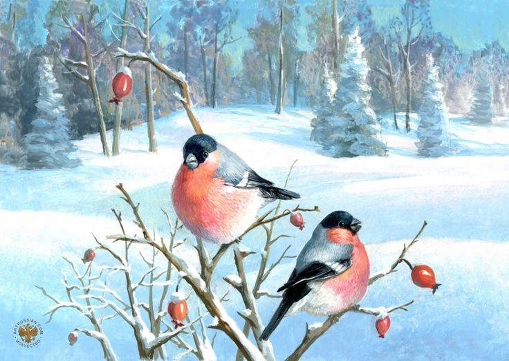 Картинки снегири зимой нарисованные