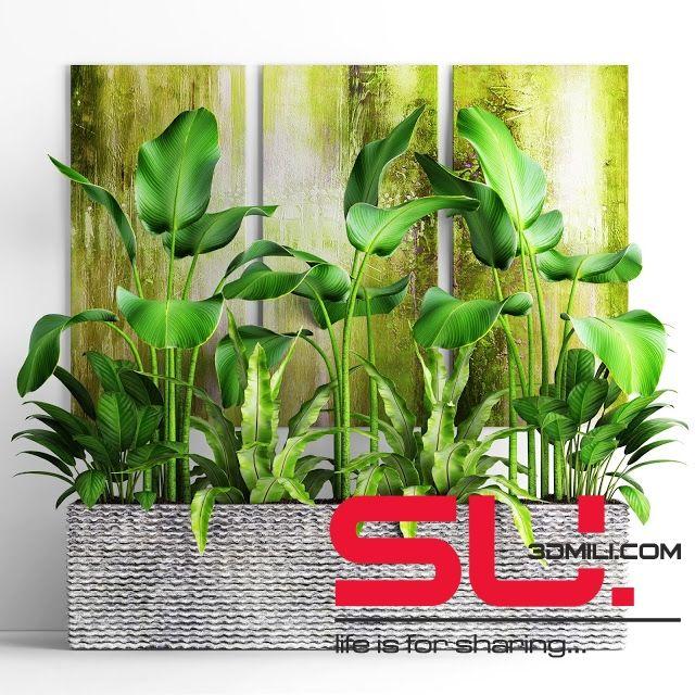 73  Plant Sketchup Model Free Download - 3D Mili - Free SketchUp