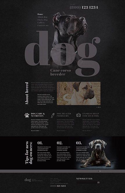 Dog. Webdesign, black and grey colors. #webdesign #black #dog