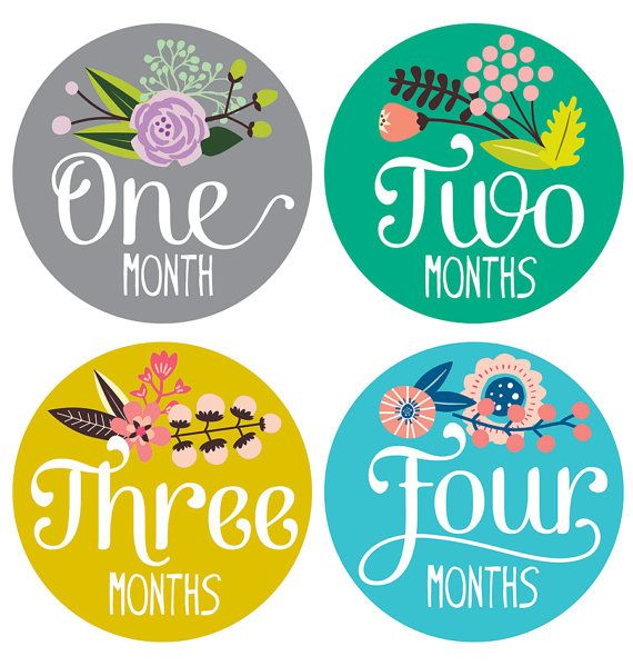 Just bought these adorable Floral Baby Stickers by Lucy Darling - Floral Hand Lettering - Months 1-12, cant wait to take her pictures in them!