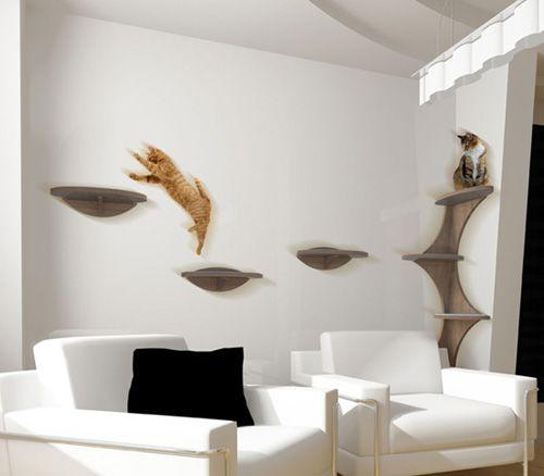 interior design shelves - ats, Interior design and House design on Pinterest
