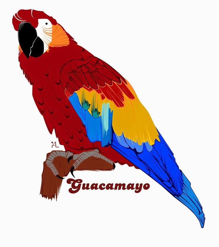 #Guacamayo
