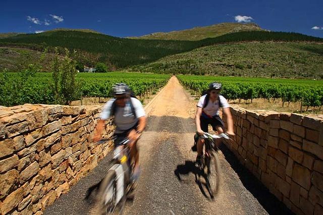 Mountain biking in Franschhoek @ Glenwood Vineyards 5 minutes from la Clé des Montagnes