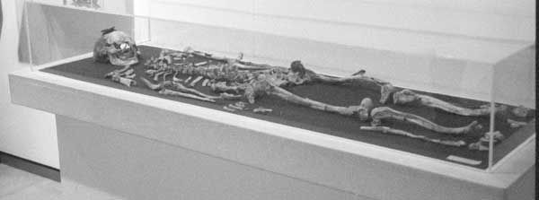 This cremated male skeleton may belong to Alexander the Great's father %u2026 or his half brother.<br />