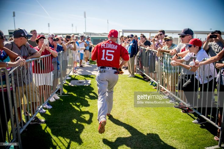 Dustin Pedroia #15 of the Boston Red Sox runs between fields during a team workout on February 17, 2017 at Fenway South in Fort Myers, Florida .