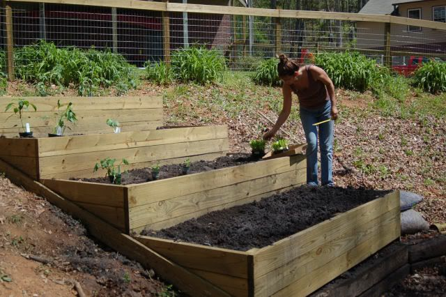 For our raised bed?  Use stepping stones to reach the center. Square foot gardening.
