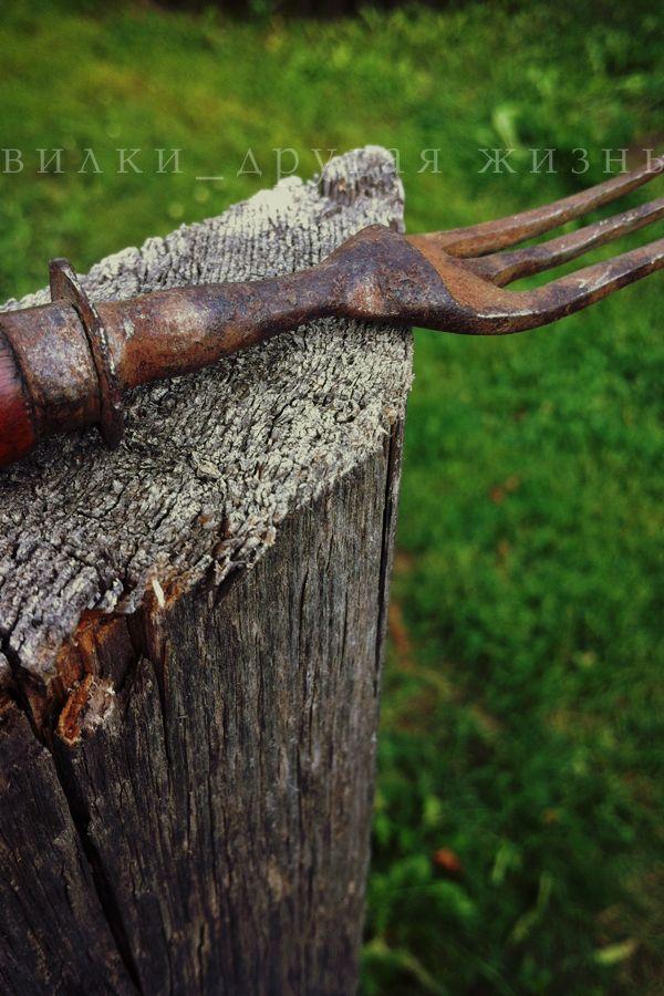 Twilight / Сумерки. #fork; #photo; #art; #cutlery; #вилка; #фотография; #искусство;