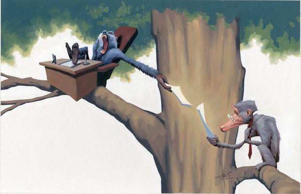 Animal Fun by James Bennett