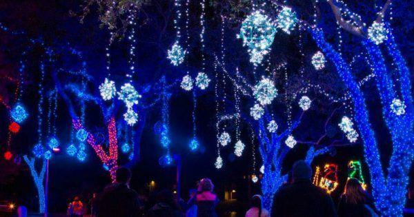 bded9f88f4efb248b380818c0b688852 - Hidden Lake Gardens Festival Of Lights