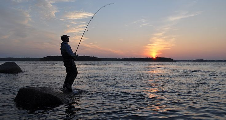 17 best images about saltwater fishing on pinterest cape for Best saltwater fishing times