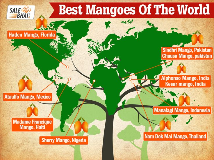World's Best Mangoes on #Mother's #Day Special - #Salebhai
