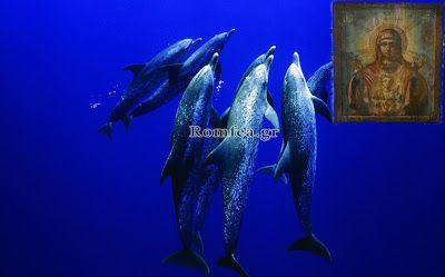 ΟΛΥΜΠΙΑΚΗ ΦΛΟΓΑ: ΘΑΥΜΑ: Δελφίνια έβγαλαν εικόνα της Παναγίας στην α...
